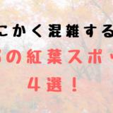 京都 紅葉 混雑