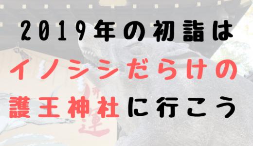 2019年の干支は亥(いのしし)!初詣はイノシシだらけの護王神社がオススメ!