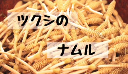 【レシピ】タダで手に入る美味しい食材!ツクシでナムルを作る!